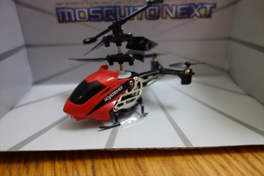 mosquito (2)_R.JPG